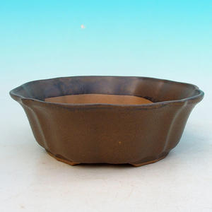 Bonsai ceramic bowl H 06, Brown