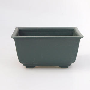 Bonsai plastic bowl MP-3, green