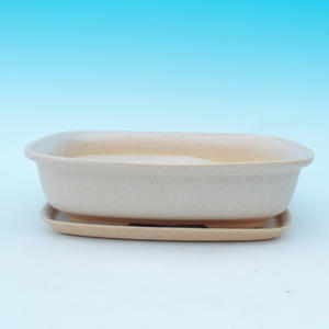 bonsai bowl and tray of water H 09, beige