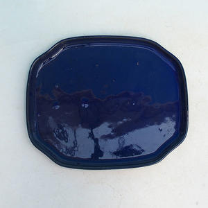 Bonsai tray of water H 31, blue