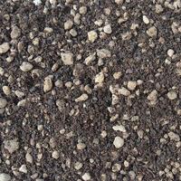 Soils for kokedams