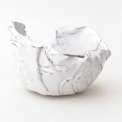 Ceramic Shell 7 x 7 x 6 cm, color white - 1