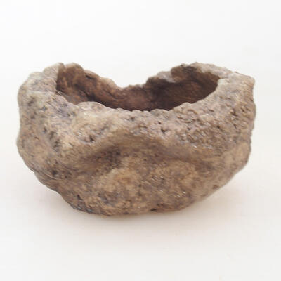 Ceramic shell 7 x 6 x 5 cm, color brown - 1
