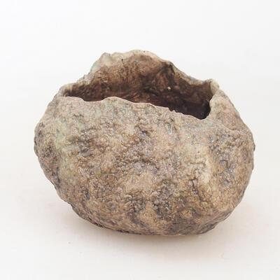 Ceramic shell 6 x 6 x 7 cm, color brown - 1