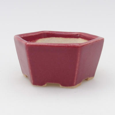 Mini bonsai bowl 5,5 x 5 x 2 cm, burgundy color - 1