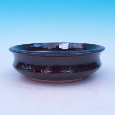 Ceramic bowl bonsai - 1