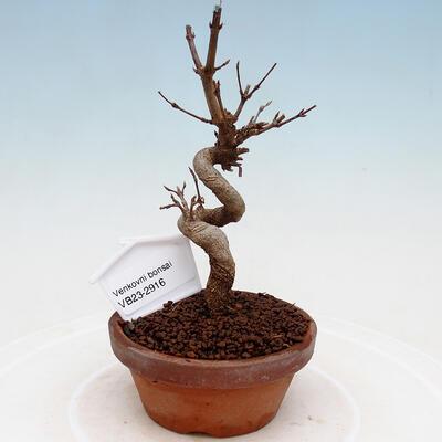 Ceramic bonsai bowl 21 x 17 x 7 cm, color green - 1