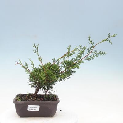 Ceramic bonsai bowl 10 x 10 x 3 cm, color green - 1