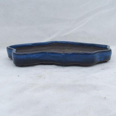 Bonsai bowl 31 x 19 x 3.5 cm, color blue - 1