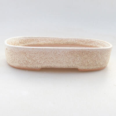 Ceramic bonsai bowl 15.5 x 10.5 x 3 cm, beige color - 1