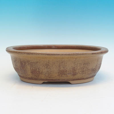 Bonsai ceramic bowl CEJ 56, beige - 1