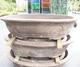 Bonsai bowl 100 x 66 x 24 cm, gray color - 1/7