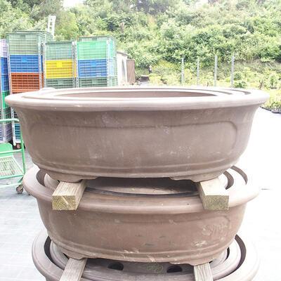Bonsai bowl 81 x 61 x 24 cm, gray color - 1