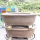 Bonsai bowl 81 x 61 x 24 cm, gray color - 1/6