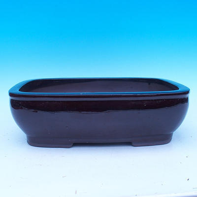 Bonsai bowl 30 x 23 x 9,5 cm - 1