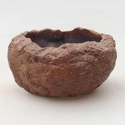 Ceramic shell 6 x 6 x 4.5 cm, brown color - 1