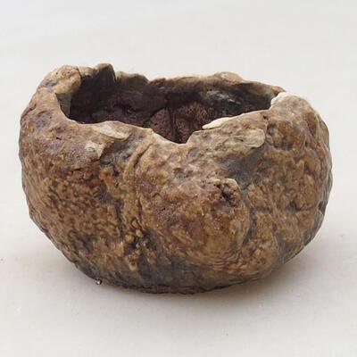 Ceramic shell 6 x 5 x 4.5 cm, brown color - 1