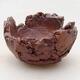 Ceramic shell 7.5 x 8 x 5.5 cm, gray-orange color - 1/3
