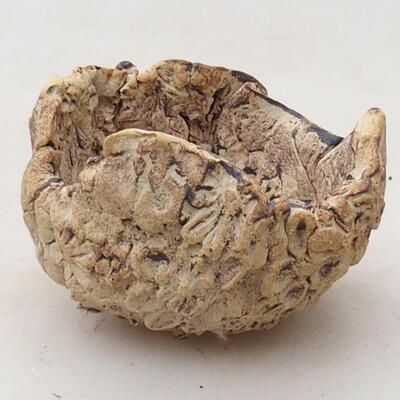 Ceramic Shell 5.5 x 6 x 4.5 cm, gray-brown - 1