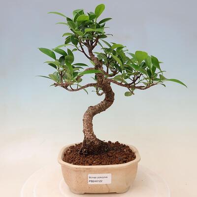 Ceramic bonsai bowl 18 x 18 x 7 cm, color cracked red - 1