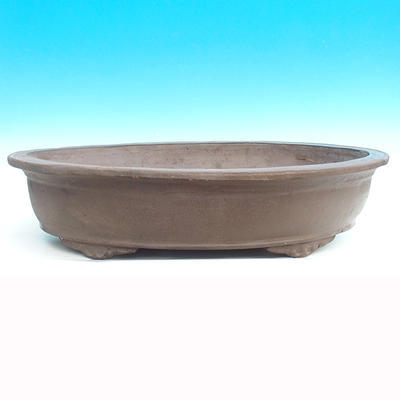 Bonsai bowl 59 x 38 x 12 cm - 1