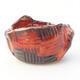 Ceramic shell 7 x 6.5 x 6 cm, color orange - 1/3