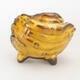 Ceramic shell 7 x 7 x 6.5 cm, color yellow - 1/3