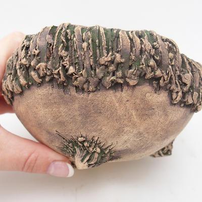 ceramic shell - 1