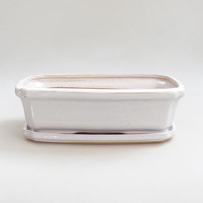 Bonsai pot  and tray of water  H07
