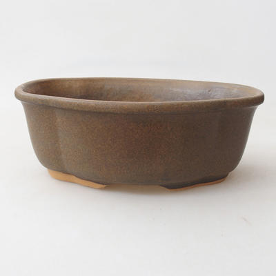 Bonsai bowl H 75 - 19 x 14 x 7 cm - 1