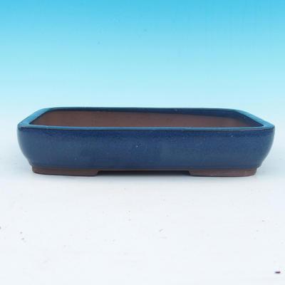 Bonsai bowl 25,5 x 17,5 x 5 cm - 1