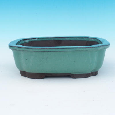 Bonsai bowl 24 x 18,5 x 7,5 cm - 1