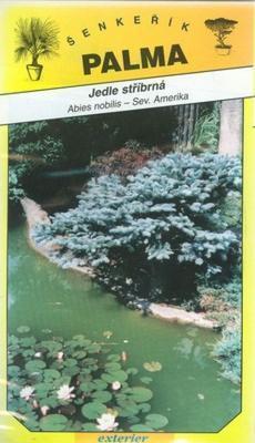 Silver Fir -Abies nobilis