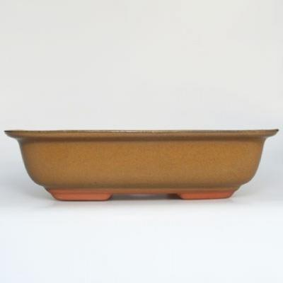 Ceramic bonsai bowl H 10 - 37 x 27 x 10 cm - 1