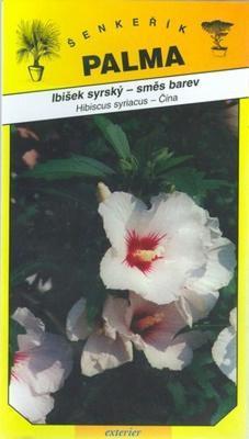 Hibiscus syriacus (mixed colors) - Hibiscus syriacus
