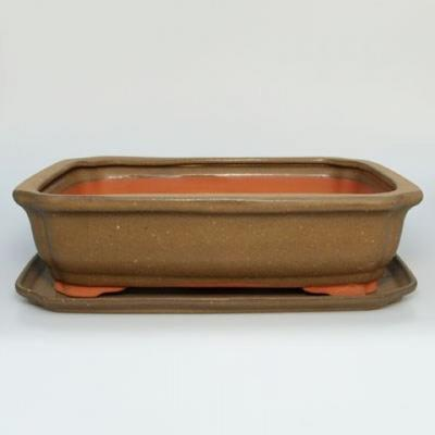 bonsai bowl and tray of water H 20 - 1