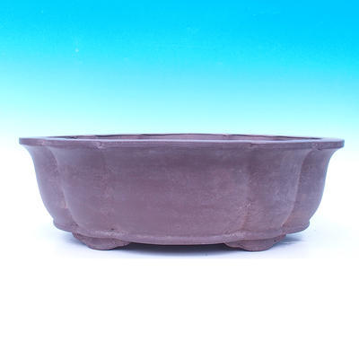 Bonsai bowl 55 x 44 x 18 cm - 2