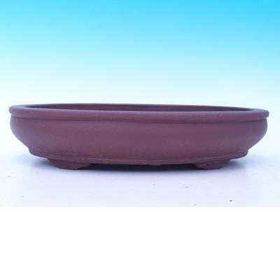 Bonsai dish - ONLY PERSONAL COLLECTION - 2