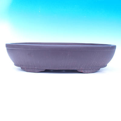 Bonsai bowl 60 x 43 x 14 cm - 2