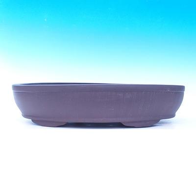 Bonsai bowl 50 x 35 x 10 cm - 2