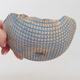 ceramic shell - 2/2