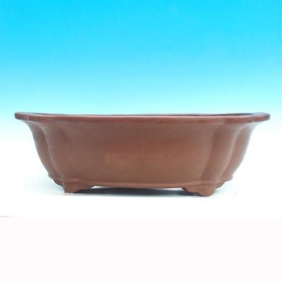 Bonsai bowl 59 x 43 x 19 cm - 2