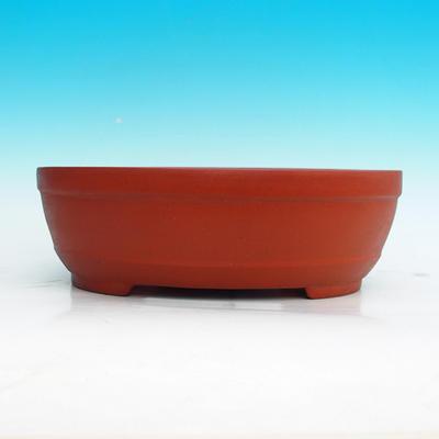 Bonsai bowl 30 x 22 x 10 cm - 2
