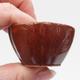 Mini bonsai bowl - 2/3