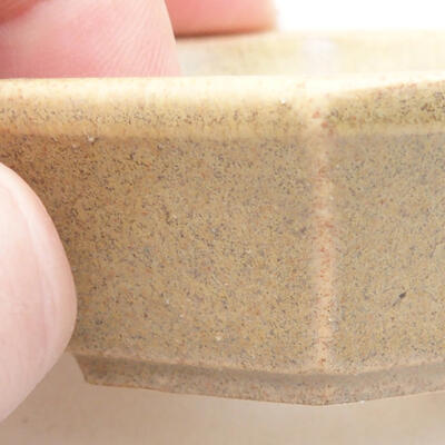 Mini bonsai bowl 6 x 5 x 2 cm, beige color - 2
