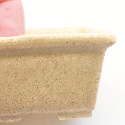 Mini bonsai bowl 4 x 3 x 2 cm, beige color - 2