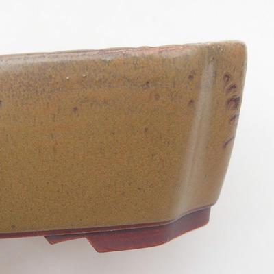 Ceramic bonsai bowl 17 x 14.5 x 6 cm, brown color - 2
