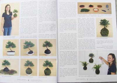 Bonsai and Japanese Garden No.52 - 2