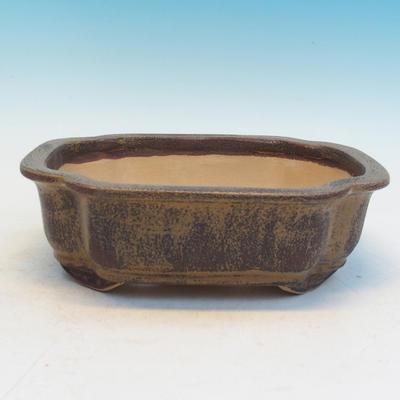 Bonsai ceramic bowl CEJ 53, brown - 2