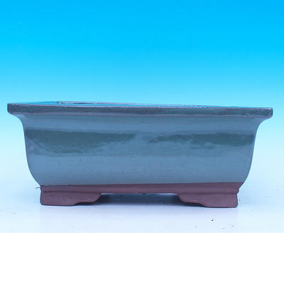 Bonsai bowl 31 x 23 x 12 cm - 2